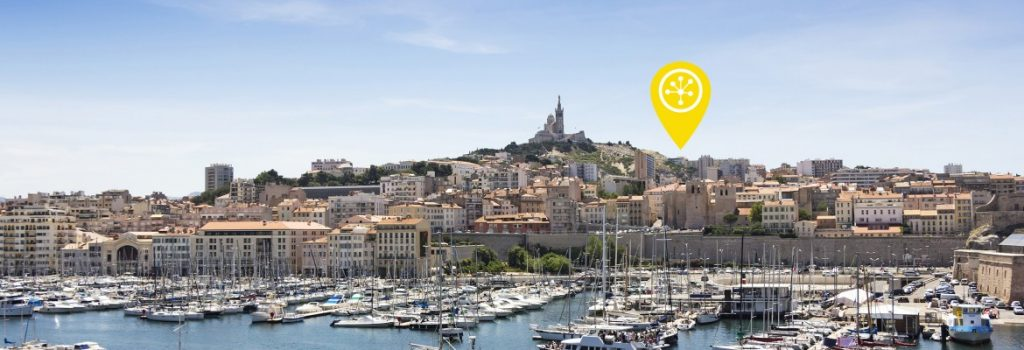 Delimiter Connects to DECIX Marseille